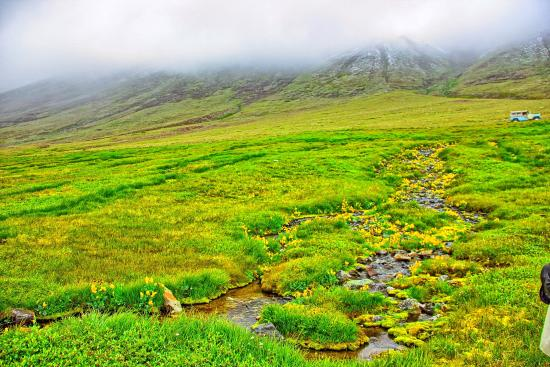 deosai-national-park