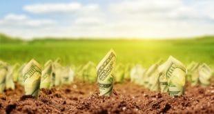 growing-up-moneygrowth